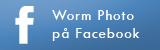 Worm Photo på Facebook